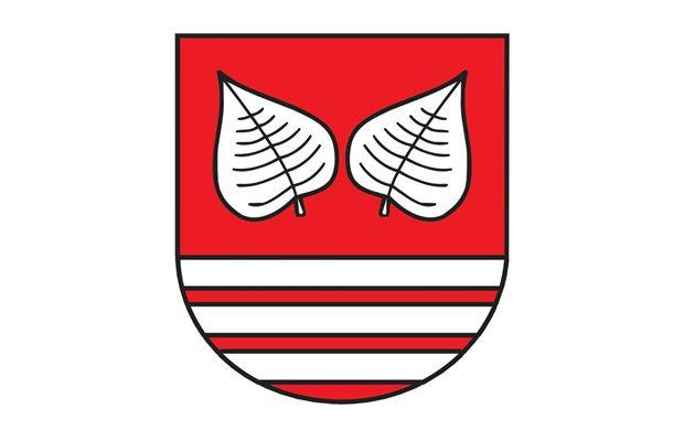 logo-grad